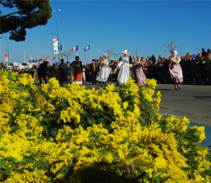 Mimosa Festival<br>Mandelieu<br>19 to 26 february 2020